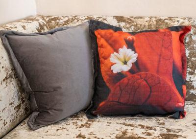 Swier scatter cushions